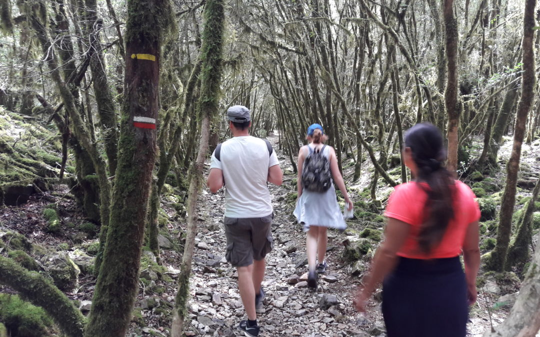 Hike learning French in Gorges of Aveyron river